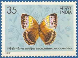 SG 1019 Butterflies 1981